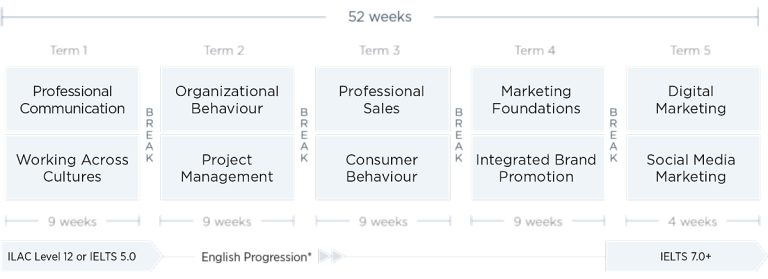 Sales & Marketing Diploma